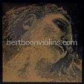 EVAH Pirazzi GOLD vioolsnaren SET (G zilver-voordeel)