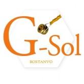 Rostanvo cellostring G