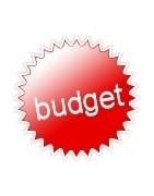 Budget altvioolkoffers