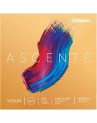 d'Addario Ascenté vioolsnaren