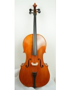 Celli 1500 Euros and under