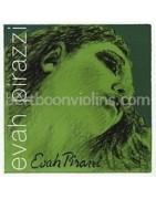 EVAH Pirazzi cello